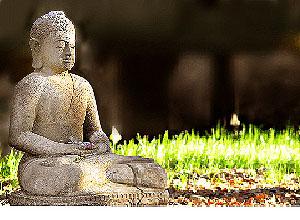 Utilize A Meditation Program To Attain Deep States Of Meditation